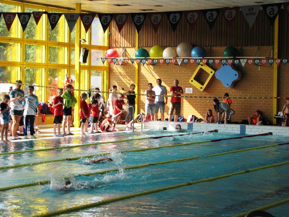 Plavecké závody O cenu rytíře Hrona