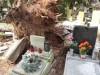 Škody na hřbitově uhradí majitelům hrobů město